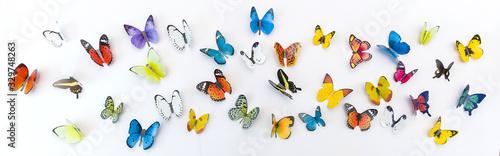 Obraz na plátně Photo of decorative butterflies pattern isolated on white background with copy space
