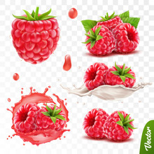 3d Realistic Transparent Isolated Vector Set, Whole And Slice Of Raspberry, Raspberry In A Splash Of Juice With Drops, Raspberry In A Splash Of Milk Or Yogurt