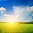 Leinwandbild Motiv Sunrise over a green field.