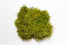 Large Piece Of Green Natural F...