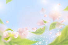Summer Time Sunny Background. Vector Poster With Flying Pink Flowers, Green Leaves And Blue Sky. Vacation Template For Your Advertising Design..