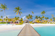Amazing Maldives island panorama. Beautiful beach scene with palm trees and perfect blue sea water. Relaxing and exotic tropical landscape view. Luxury summer vacation and holiday banner concept