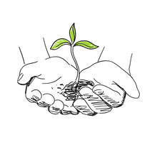 Hands With Seeds And Sprout. Agriculture Sprout In Hand. Growth Of Plants. Sketch Hand Drawn. On White Background. Vector. Front View.