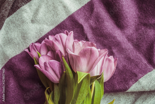 Fototapeta tulips bouquet. flowers in spring, summer, March 8, a gift for Mother's Day. Congratulations on the holiday. beautiful background obraz na płótnie