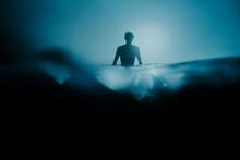 Artic Swimmer