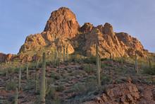 Spring Landscape At Sunrise Along The Apache Trail, Tonto National Forest, Arizona, USA