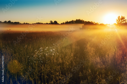 Fototapeta lato   path-in-a-foggy-field-with-blooming-different-wildflowers-in-spring-the-sun-rising-in-the-fog-over-the-horizon-beautiful-landscape-in-the-early-summer-morning