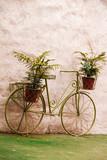 Stary zielony rower z zawieszonymi doniczkami z kwiatami