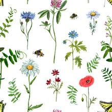 Wild Flowers Seamles Pattern. ...
