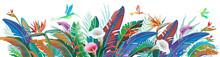 Tropical Jungle Plants, Flower And Hummingbirds, Vector Illustration