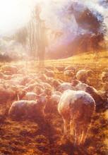 Jesus The Good Shepherd, Wood ...