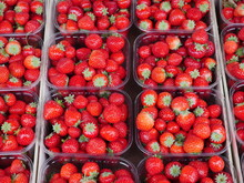 Strawberries In Bright Red, Pr...