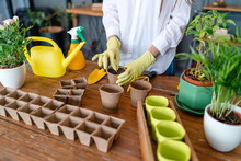 Girl Gardener Plants Seeds In Pots With Soil Standing At The Table In The Home Garden