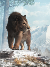 A Saber Tooth Cat Stands On A ...