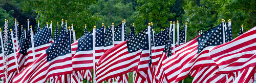 A large group of American flags fly in the breeze, creating a beautiful scene of pride for our country