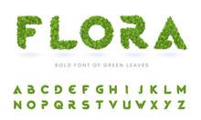 Simple Bold Green Leaves Textured Natural Font. Realistic Garden Letters Set. Business Logo Design Template Bundle.