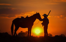 Cowboy Silhouette And Horses I...