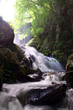 Japanese Forest And Mountain Stream Water