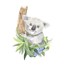 Illustration Of A Koala With Y...
