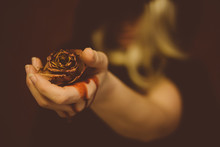 Close-up Of Woman Hand Holding Dead Rose With Bleeding