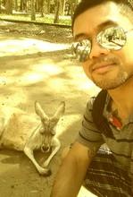Man By Kangaroo Relaxing At Zoo