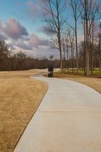 A Cement Cart Path Through Bro...