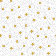 Seamless Pattern Daisy Chamomile Field Meadow Spring Summer Flowers, Trendy Background Cute Floral Texture For Print, Fashion, Textile, Fabric, Wrapping.