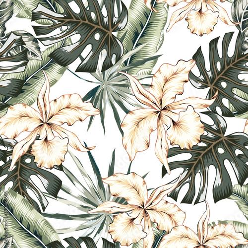tropikalne-kwiaty-orchidei-monstera-liscie-palm-bananowych-biale-tlo-wektor-wzor-ilustracja-lisci-dzungli-rosliny-egzotyczne-kwiatowy-wzor-letniej-plazy-rajska-przyroda