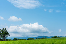 Rural Nature Landscapes. View ...