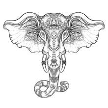 Beautiful Hand-drawn Tribal Style Elephant. Coloring Book Design With Boho Mandala Patterns, Ornaments. Ethnic Background, Spiritual Art, Yoga. Indian God Ganesha, Thai Symbol. T-shirt Print, Posters.