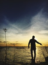 Rear View Of Silhouette Man Holding Gun In Sea Against Sky During Sunset