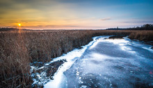Frozen Stream At Sunset