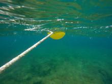 Underwater Image Las Rotas San Antonio Cape Nature Reserve Denia Alicante Spain