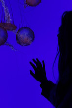 Cropped Image Of Woman Looking At Jellyfish Swimming In Water At Ripleys Aquarium Of Canada