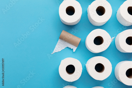 Cuadros en Lienzo Empty used toilet roll next to a full roll of toilet paper