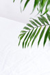 canvas print picture - Greeting corner frame from green twigs of tropical exotic palm leaves above textile white background.