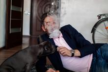 Puppy French Bulldog. Portrait...