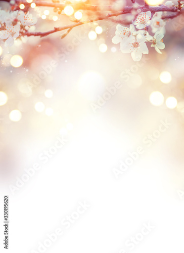 Cuadros en Lienzo Spring Nature Easter art background with blossom