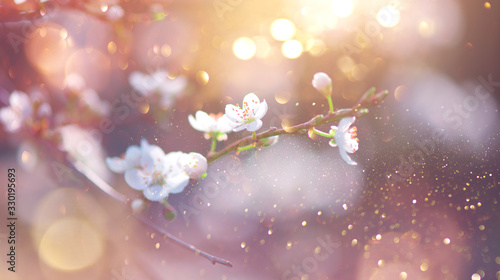 Spring Nature Easter art background with blossom. Beautiful nature scene with blooming flowers tree and sun flare. Sunny day. Spring flowers. Beautiful Orchard. Abstract blurred background. Springtime
