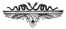Snakes On Shelf Have A Good Arrangements Or Artwork, Vintage Engraving.