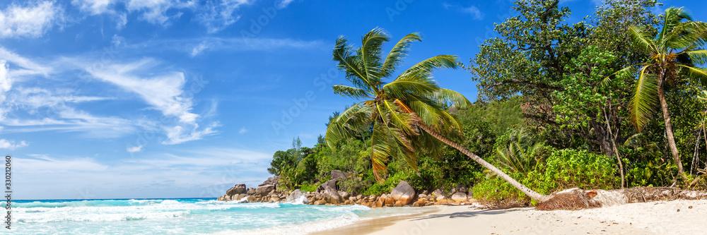 Fototapeta Seychelles Anse Georgette beach Praslin island palm panoramic view holidays vacation paradise sea