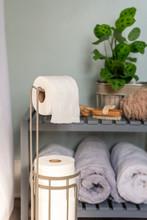 Toilet Paper Dispenser In Home...