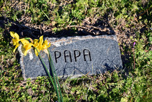 Beloved Papa Is Remembered Wit...