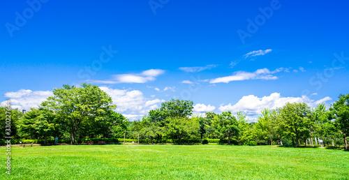 青空と緑の公園 ワイド