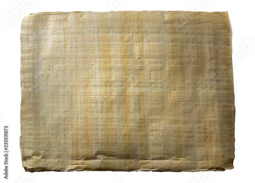 Photo Papyrus leaf on an isolated background