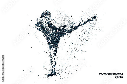 Fotografía silhouette of a kickboxing from particles 1, bicolor vector illustration