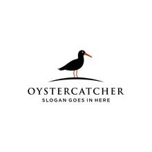 Oyster Catcher Bird Logo Design Vector Image Illustration