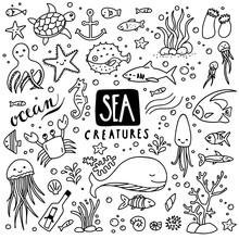 Sea Creatures Doodles