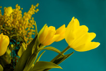 Spring Bouquet Of Yellow Tulip...