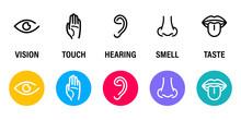 Five Human Senses: Hearing, Si...